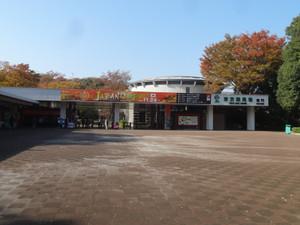 Dsc06434